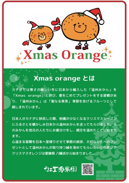 「クリスマスオレンジ」始まりました。